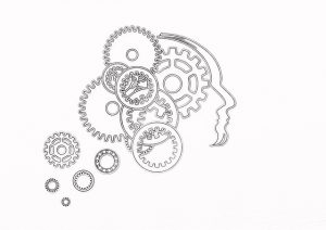 脳,痛み,認知