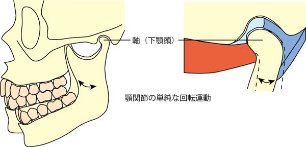 顎関節の開閉